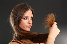 صورة علاج لتقصف الشعر , تعرفى على علاج واسباب تقصف الشعر