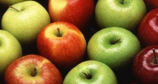 صور ما فائدة التفاح , ثمرة تخلصك من جميع مشاكلك