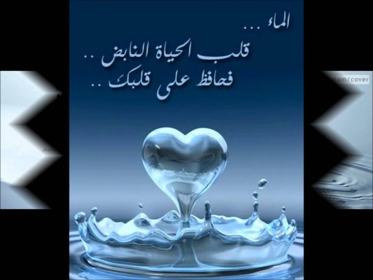 كتاب رسالة من الماء