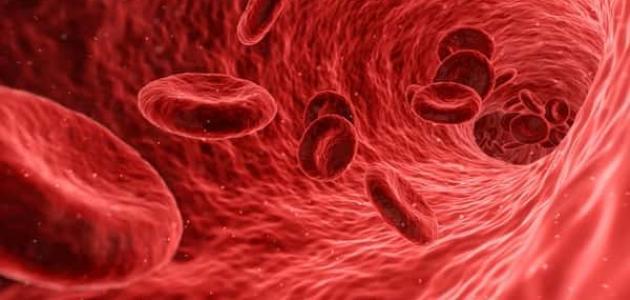 صور علاج حموضة الدم بالاعشاب , وصفات طبيعيه لمعالجه حموضه الدم