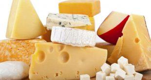 صور تفسير الجبن في المنام , بشرة فى اجمل اكلة