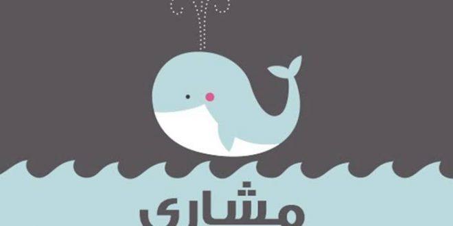 صورة معنى اسم مشاري , اصل اسم مشارى في اللغه