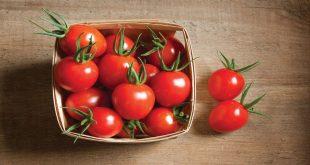 صورة تفسير الطماطم في الحلم , طبخ الطماطم في المنام