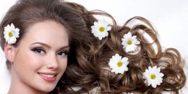صورة فوائد البابونج للشعر , ماهى ايجابيات البابونج على شعرك