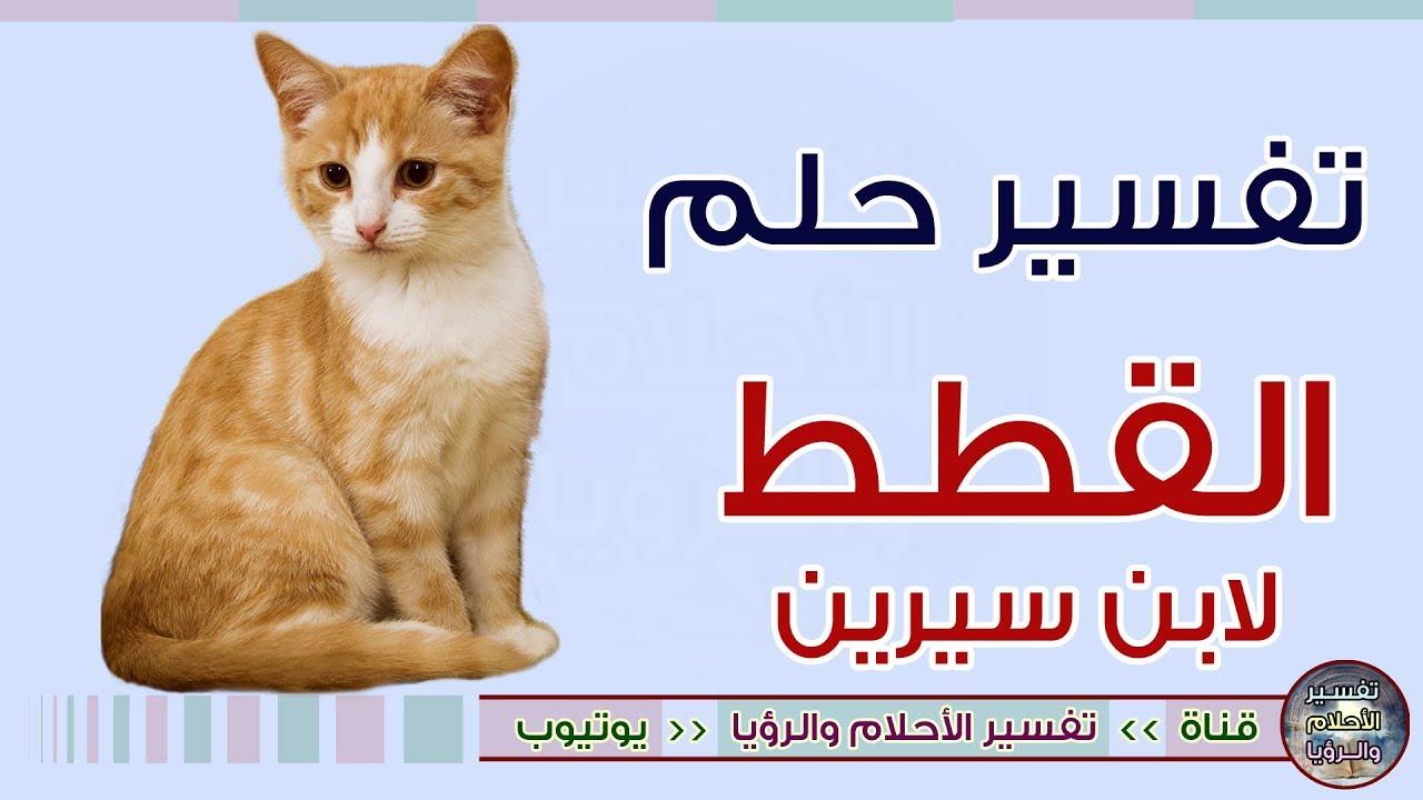 تخصص الاعتلال العصبي الصياغة تفسير موت القطط في المنزل Alterazioni Org