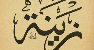 معنى اسم زينه , اسم زينه في المعاجم العربيه