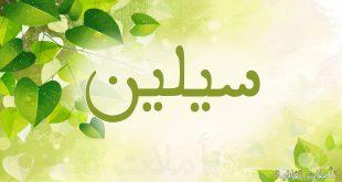 صورة ما معنى اسم سيلين , معاني اسماء عربية قيمة