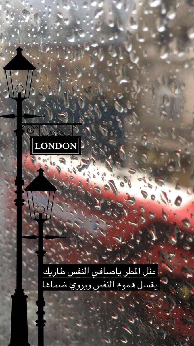 صور عن المطر ليدي بيرد 4