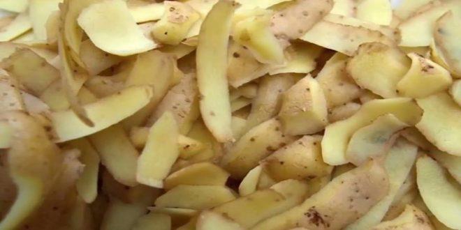 صورة فوائد قشر البطاطس , فائدة عجيبه لم نتوقعها