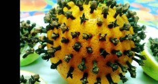 صورة كيف اتخلص من الناموس بدون مبيدات , حل سريع و سحرى للتخلص من هذه الحشرة