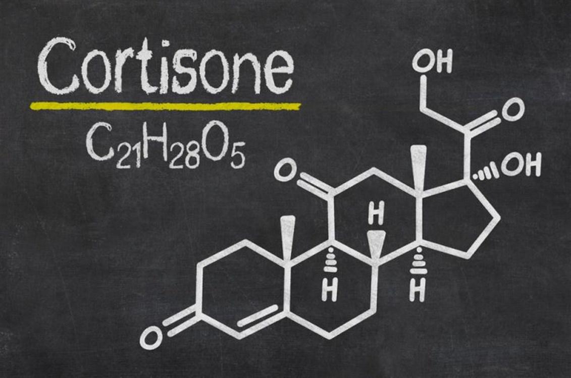 صورة ما هو دواء الكورتيزون , علاج سحرى لكثير من الامراض