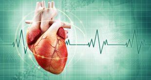 صورة علاج خفقان القلب بعد الاكل , تفادى سرعة دقات القلب