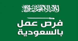 صورة وظائف مدرسين بالسعودية اليوم , حتى تستطيع الحصول على وظيفه يمكننا مساعدتك