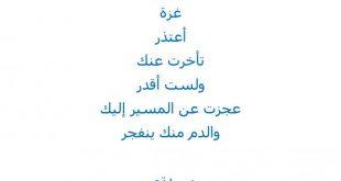 صورة قصيدة اعتذار للحبيب , الكلمات و المفجئات هى افضل اعتذار
